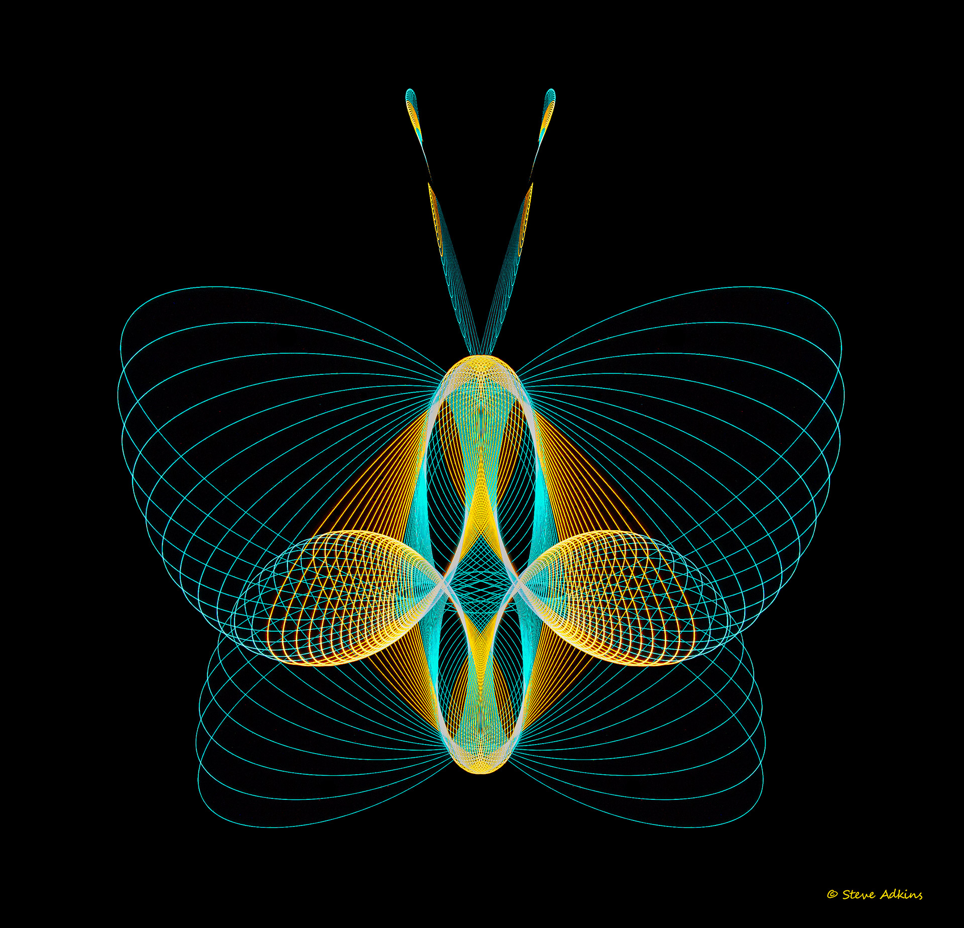 pysiogram,light weaving,light,weave,butterfly,